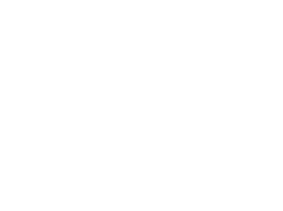 BrainFutures 2017
